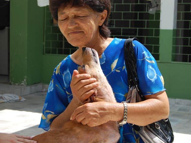 Cão arrastado na PB é adotado e vai dividir casa com 58 gatos e 2 cadelas (Foto: Inaê Teles/G1)