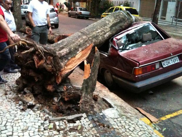 Árvore atingiu carro em rua de Copacabana, no Rio, nesta quinta-feira (15) (Foto: Felipe Savaget/VC no G1)
