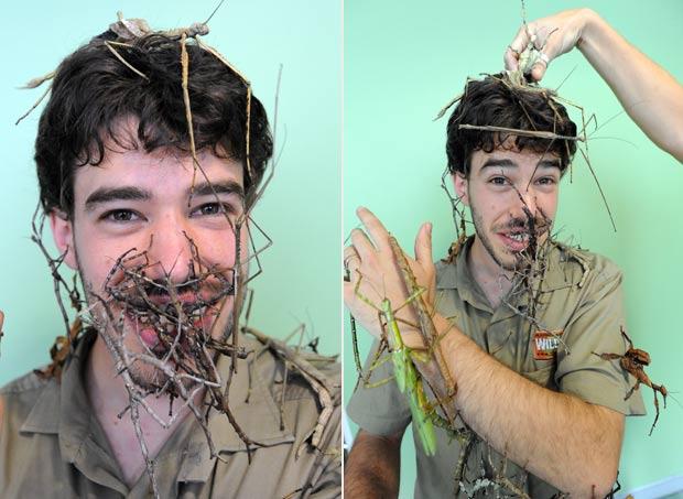 Evan Armstrong posou com várias espécies de bichos-pau. (Foto: Torsten Blackwood/AFP)