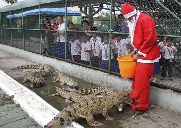 Tratador levou mordida ao alimentar crocodilos em jaula. (Foto: Romeo Ranoco/Reuters)