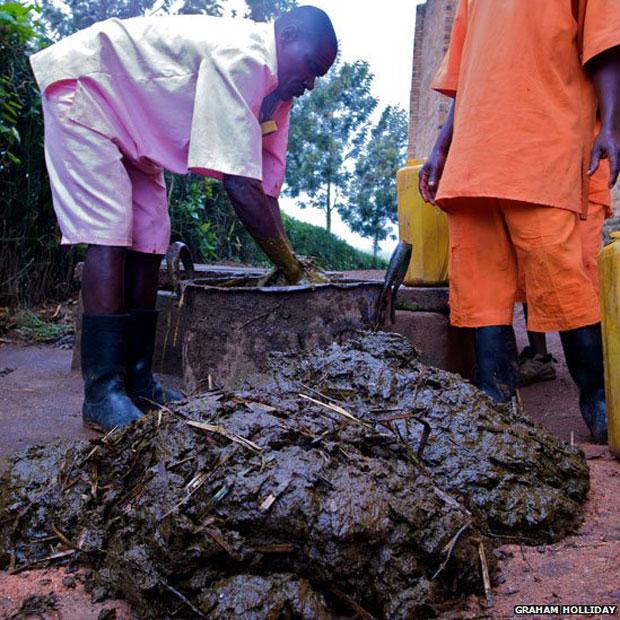 O biogás é produzido ao se mesclar os detritos que os presidiários de Nsinda deixam nos 24 banheiros locais com fezes de vacas que habitam os arredores do centro de detenção e mais água. A dieta dos prisioneiros não é rica o suficiente para .produzir biogás de qualidade, mas a combinação de detritos resulta num gás de qualidade (Foto: Graham Holliday)
