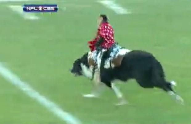 Macaco atravessou o campo 'cavalgando' um cachorro no intervalo da partida (Foto: Reprodução/NFL/CBS)