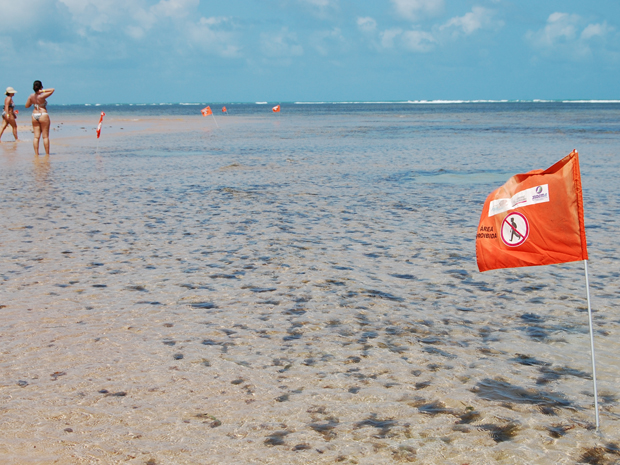 Bandeiras limitam o acesso dos visitantes aos corais da ilha de Areia Vermelha (Foto: Krystine Carneiro/G1)