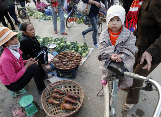 Ratos abatidos são oferecidos em mercado de Canh Nau (Foto: Reuters)