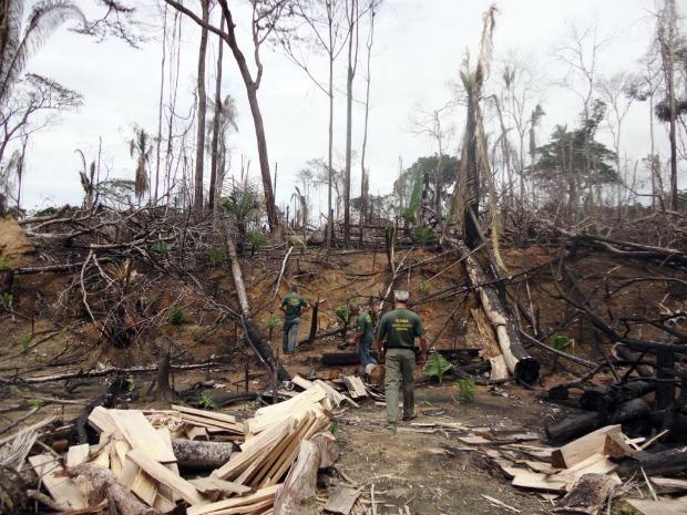 Desmatamento foi flagrado por agentes do Ibama durante operação (Foto: Assessoria/Ibama)