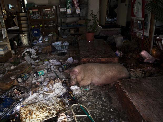 Fukushima (Foto: David Guttenfelder/AP)