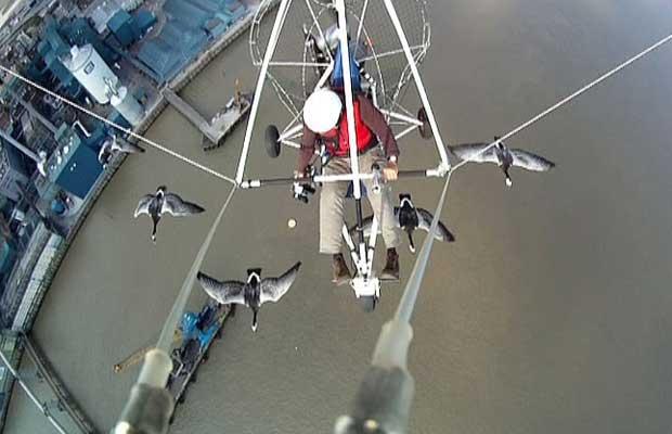 Piloto de ultraleve é seguido por gansos que o confundiram com mãe (Foto: BBC)