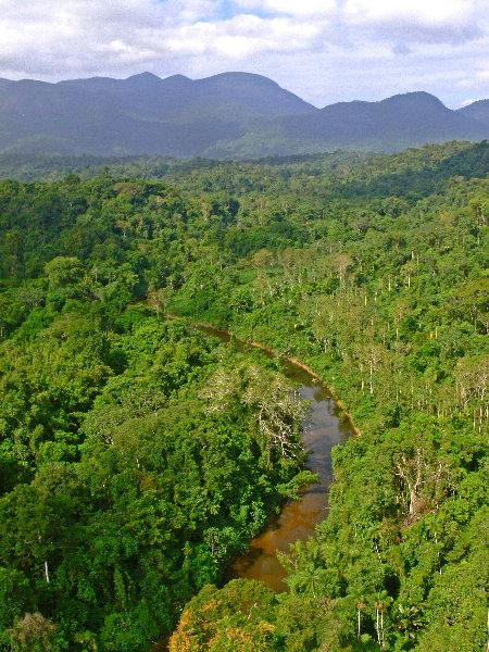 Vista do Parque Nacional Serra da Mocidade, uma das unidades de conservação estudadas em Roraima (Foto: Divulgação)