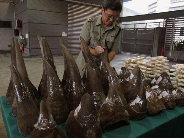 Carregamento de chifres de rinocerontes sul-africanos confiscados em Hong Kong (Foto: Reuters/Bobby Yip)