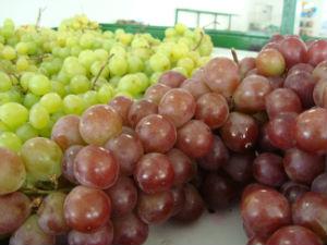 Comer 12 sementes de uva traz fartura ao próximo ano.  (Foto: Lynne Aranha/ G1)