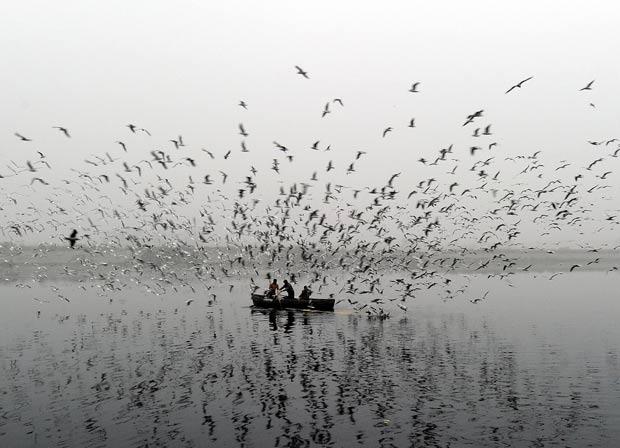 Cena ocorreu no rio Yamuna, em Nova Déli. (Foto: Prakash Singh/AFP)