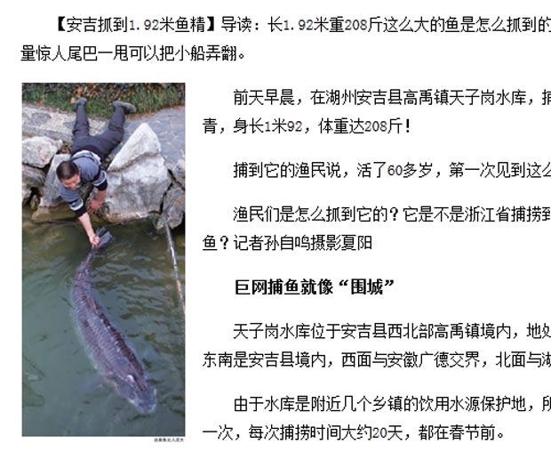 Peixe de 1,92 metro de comprimento e 104 quilos virou atração turística. (Foto: Reprodução)