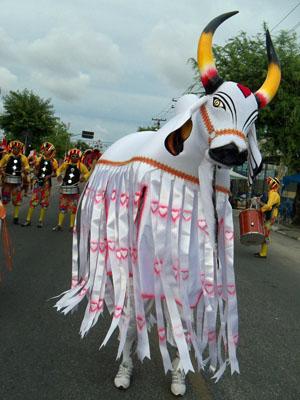Típico do ciclo natalino, boi ganha coloridos próprios no carnaval. (Foto: Acervo: Casa do Carnaval)
