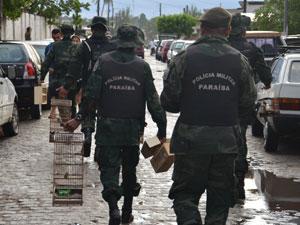 Polícia Ambiental apreende aves em feiras na Região Metropolitana de João Pessoa (Foto: Walter Paparazzo/ G1 PB)