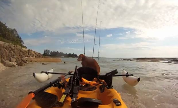 Homem usou caiaque para ser resgatado. (Foto: Reprodução/ABC Action News)