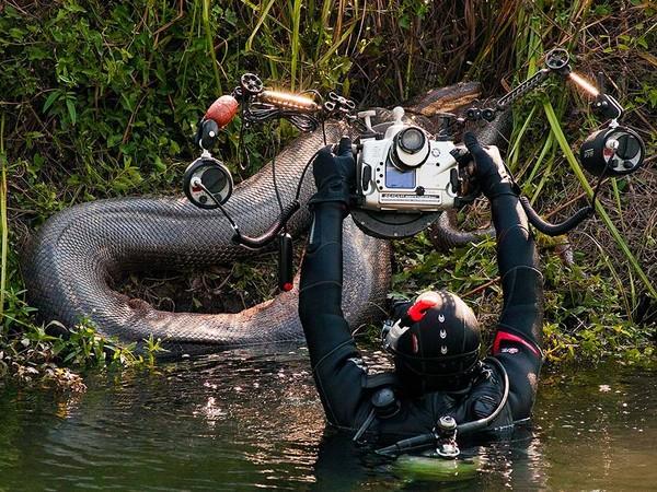 Sucuri no rio Formoso, em Bonito, MS (Foto: Daniel De Granville/Photo In Natura)