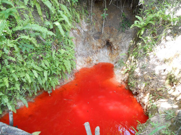 Água avermelhada intriga moradores (Foto: Divulgação/ Aqui Goiana)