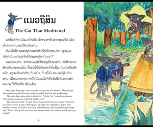 Imagem do livro, em lao (Foto: Divulgação)