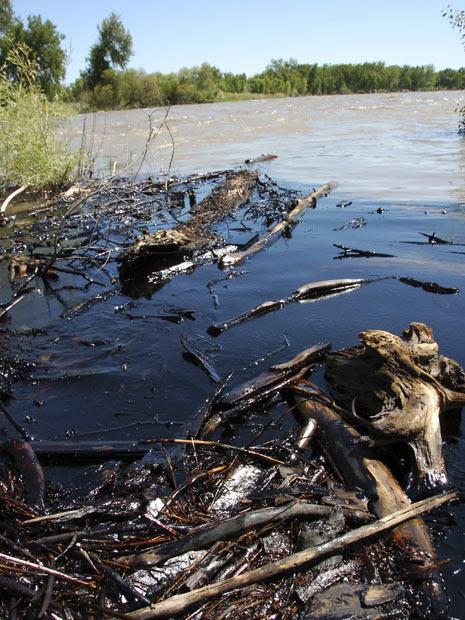 Óleo que vazou no Rio Yellowstone, nos Estados Unidos, em julho de 2011. (Foto: Matthew Brown/AP)