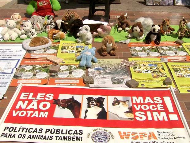 De acordo os manifestantes, a lei atual é branda e não pune devidamente quem comete crimes contra animais (Foto: TV Verdes Mares/Reprodução)