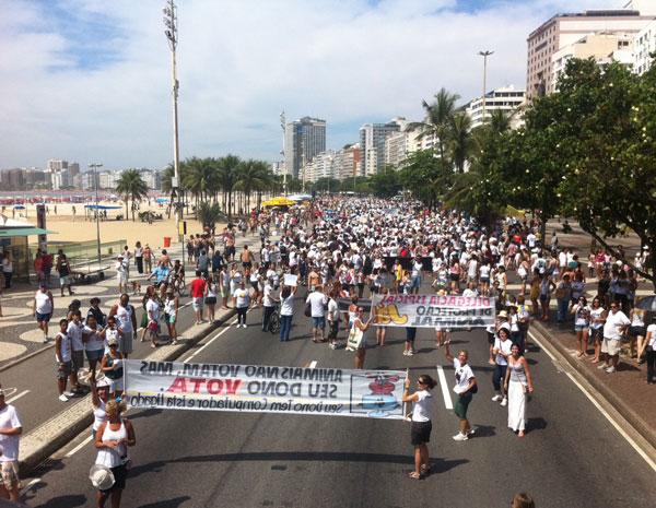 Centenas de pessoas estiveram em Copacabana (Foto: Thamine Leta/ G1)