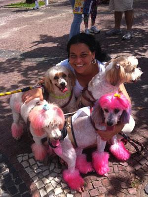 Renata e suas cadelas  (Foto: Thamine Leta/ G1)