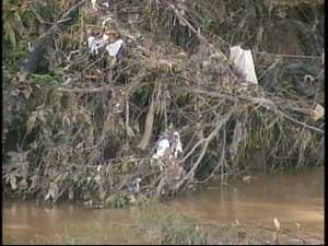 Árvores revelam lixo que estava no fundo do rio (Foto: Reprodução/TV Integração)