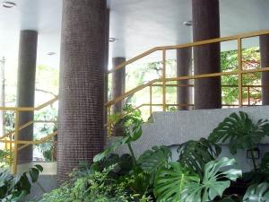 O hall de entrada ajardinado do Edifício Louveira, inaugurado em 1946 (Foto: Alec Duarte/G1)