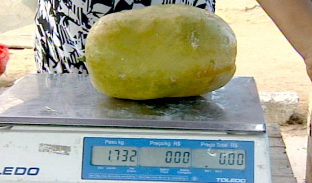 Bombeiro cultiva maracujá de 1700 kg em Linhares, no Norte do ES (Foto: Reprodução/TV Gazeta)