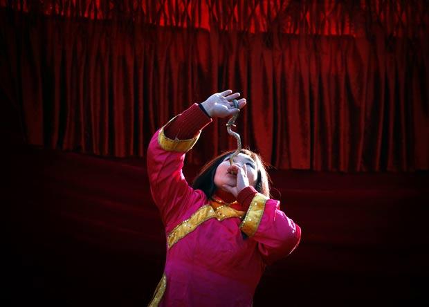 Chinesa engole uma cobra viva durante uma apresentação. (Foto: David Gray/Reuters)