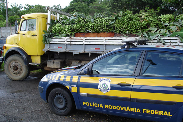 PRF apreende caminhão com madeira embaixo de bananas (Foto: Divulgação/ PRF)