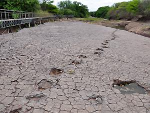 Vale dos Dinossauros, em Sousa (PB), vai ganhar melhorias após convênio do governo estadual com a Petrobras (Foto: Francisco França/Secom-PB)