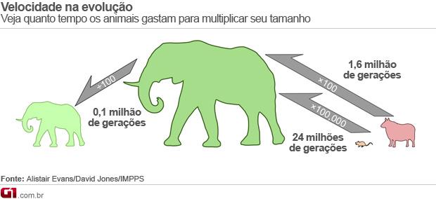 Estudo determina velocidade da evolução em longo prazo pela 1ª vez. (Foto: Arte / G1)
