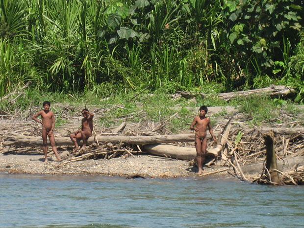 índios isolados na Amazônia peruana (Foto: Gabriella galli/Survival/Divulgação)