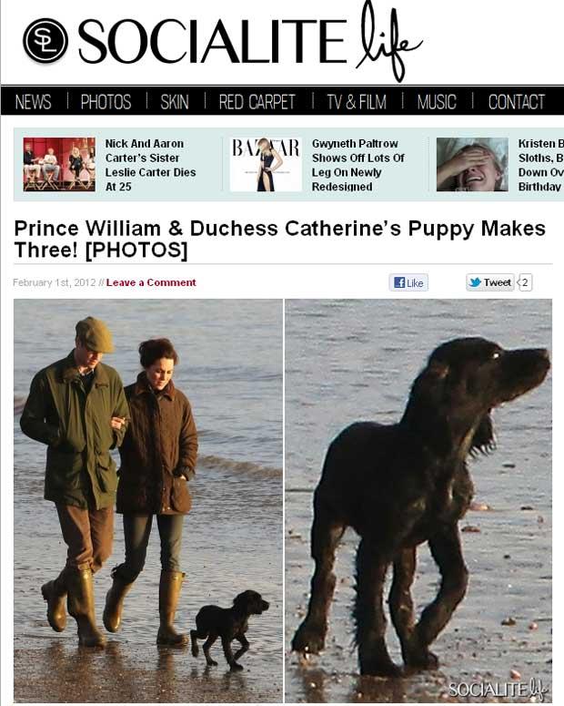 """Imagem do site """"Socialite Life"""" mostra Kate, William e o novo cão de estimação do casal, um cocker spaniel (Foto: Reprodução)"""
