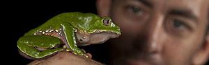 Expedição descobre 365 espécies no Peru (Carlos Sevillano)