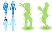 Veja os benefícios da dança para o corpo (Arte G1)