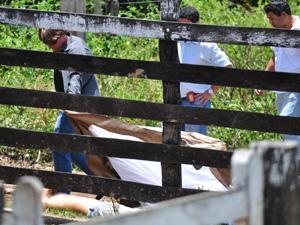 Cinco pessoas são executadas em fazenda na Região do Vale do Rio Doce em MG. Ex-vereador está entre mortos (Foto: Leonardo Morais/Hoje em Dia/AE)