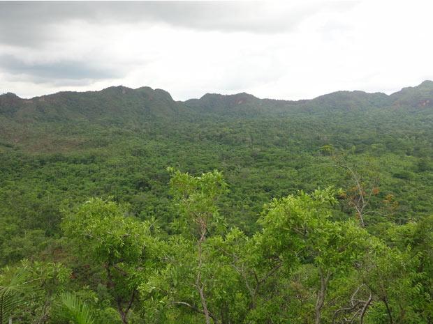No meio da cratera se formou uma floresta (Foto: Divulgação/Iphan)