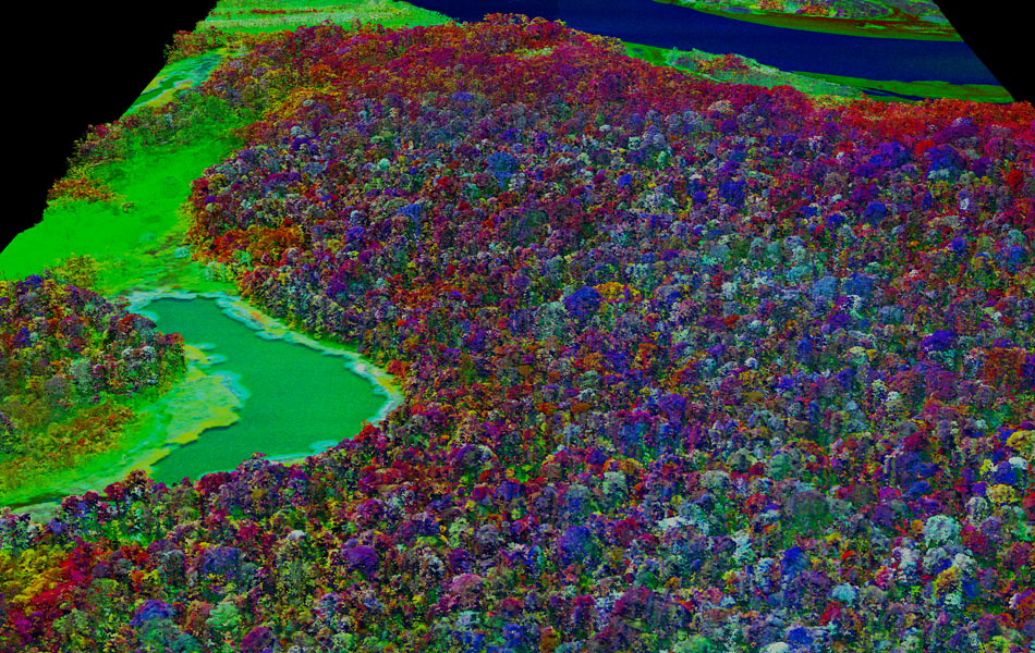 Imagem inédita faz mostra detalhes químicos da cobertura vegetal da Amazônia peruana