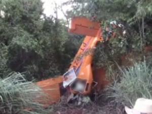 Avião monomotor caiu em área rural de Bela Vista do Paraíso  (Foto: Divulgação/ Leandro Borges de Araújo)