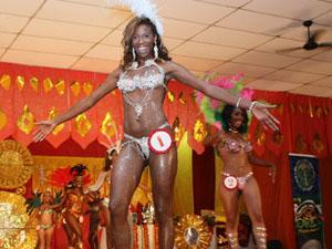 São Carlos recebe inscrições para blocos carnavalescos (Foto: Divulgação/Prefeitura de São Carlos)