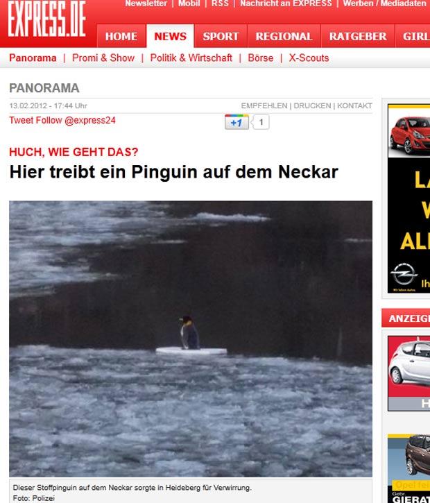 Polícia de Heidelberg fez operação para salvar pinguim, mas descobriu animal de pelúcia. (Foto: Reprodução)