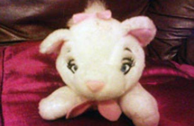 Em dezembro de 2011, um grupo de resgate passou 12 horas tentando salvar uma gata que estaria presa dentro de uma grande lixeira de reciclagem em Moelfre, no Reino Unido, mas, no final, descobriu que era apenas um brinquedo. (Foto: Reprodução)