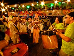 Na foto, desfile do Carnaval 2011 (Foto: Vinicius Sgarbe/ G1 PR)