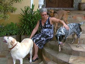 Segundo veterinário, sem a vacinação, o risco de o animal morrer aumenta.  (Foto: Reprodução/EPTV)