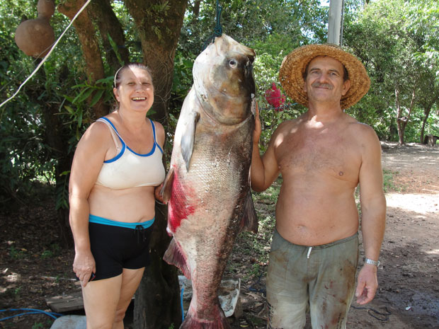 Fish farmer Jair Balest and his wife, Yvonne, pose with a record shattering 40 kg Chinese carp that they pulled out of a pond on their farm in Dona Francisca, in central Rio Grande do Sul, Brazil on Thursday 23 February 2012
