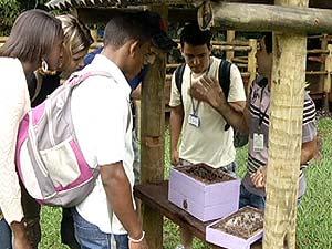 Exposição mostra importância da preservação  (Foto: Reprodução/TV Integração)
