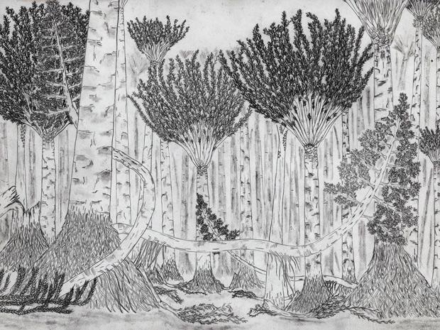 Imagem reproduz como seria a antiga floresta Gilboa. (Foto: Frank Mannolini / Science)