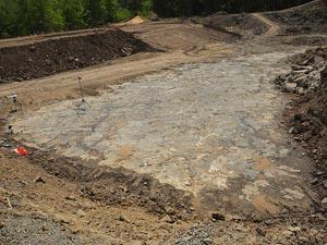 Estudo da floresta pré-histórica foi feito com análise de rochas (Foto: William Stein/Divulgação)